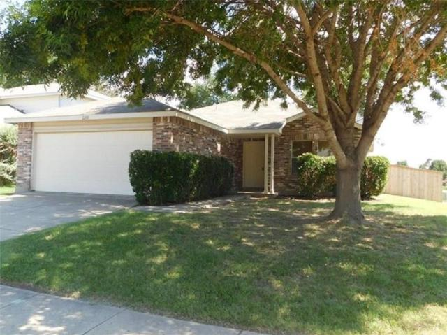 2200 Chestnut Drive, Little Elm, TX 75068 (MLS #14116283) :: Tenesha Lusk Realty Group