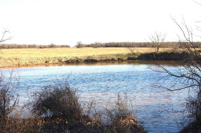 Tract 9 Hawthorn Road, Perrin, TX 76486 (MLS #14116294) :: The Heyl Group at Keller Williams