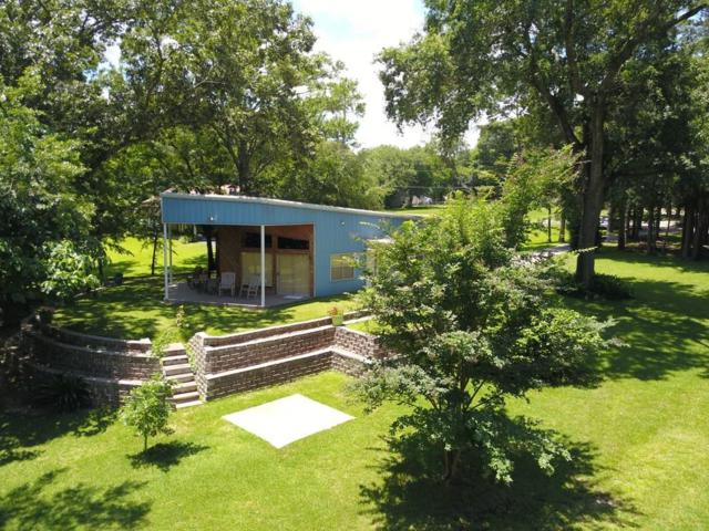 23220 Edgewater Drive, Berryville, TX 75763 (MLS #14116342) :: Vibrant Real Estate