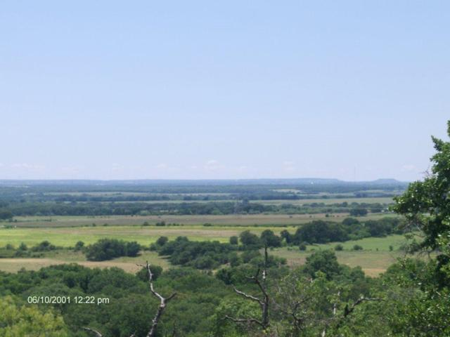 TBD County Rd 343, Proctor, TX 76468 (MLS #14116347) :: RE/MAX Landmark