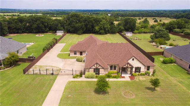 3860 Monroe Drive, Midlothian, TX 76065 (MLS #14116371) :: The Sarah Padgett Team