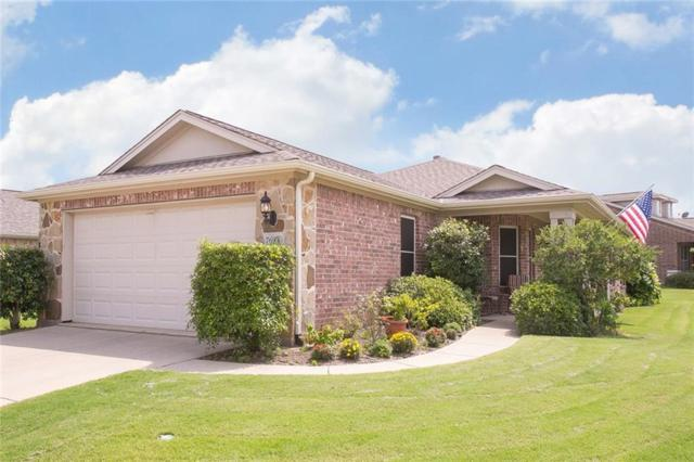 7693 Pacific Dunes Drive, Frisco, TX 75036 (MLS #14116424) :: The Chad Smith Team