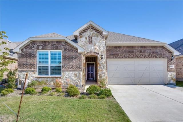 6601 Roaring Creek, Argyle, TX 76226 (MLS #14116619) :: RE/MAX Town & Country