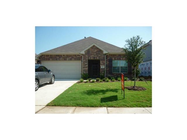 1013 Villa Paloma Boulevard, Little Elm, TX 76068 (MLS #14116628) :: Tenesha Lusk Realty Group