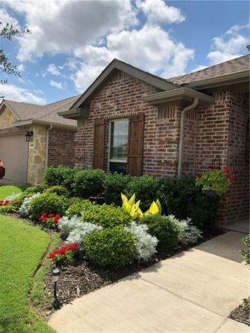 1905 Pecan Grove Drive, Anna, TX 75409 (MLS #14116928) :: RE/MAX Town & Country
