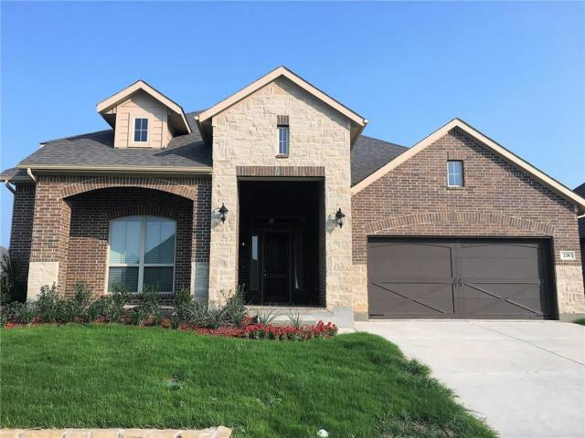 228 Open Sky Drive, Aledo, TX 76008 (MLS #14117182) :: RE/MAX Town & Country