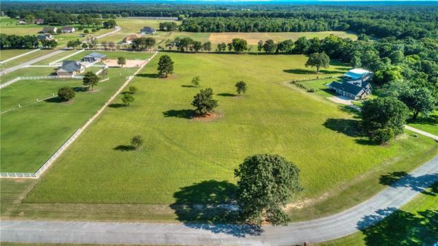 23221 Bridle View Drive, Lindale, TX 75771 (MLS #14117299) :: The Heyl Group at Keller Williams