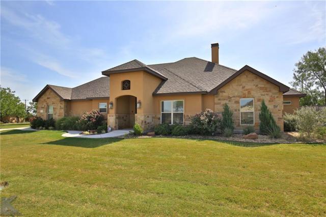 133 Chardonnay Way, Abilene, TX 79602 (MLS #14117394) :: The Heyl Group at Keller Williams