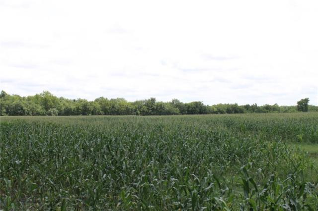 18.96 Ac. Cr 2720, Caddo Mills, TX 75135 (MLS #14117409) :: RE/MAX Town & Country