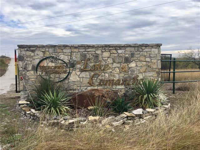 TBD Blue Heron Ct Court, Comanche, TX 76442 (MLS #14117423) :: The Mitchell Group