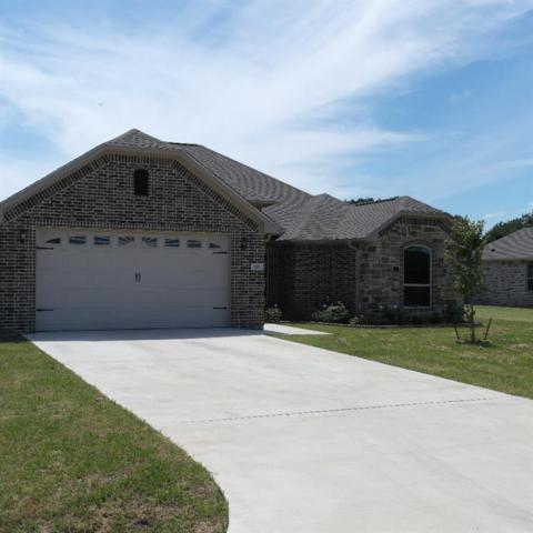 137 Goose Lake, Edgewood, TX 75117 (MLS #14117497) :: The Heyl Group at Keller Williams