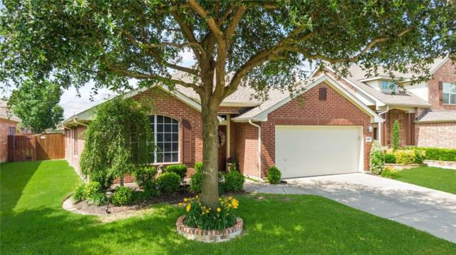 327 Highland View Drive, Wylie, TX 75098 (MLS #14117575) :: The Heyl Group at Keller Williams