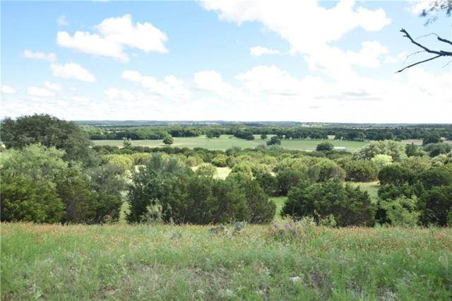 4823 County Road 1008 Road, Glen Rose, TX 76043 (MLS #14118108) :: Ann Carr Real Estate