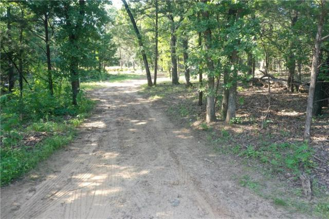 1891 County Road 297, Gainesville, TX 76240 (MLS #14118171) :: The Kimberly Davis Group