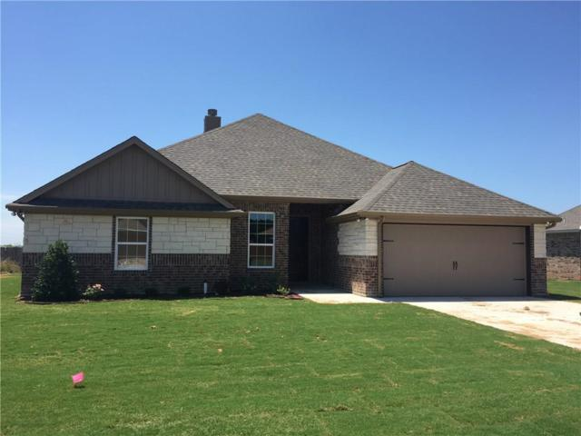3048 Meandering Way, Granbury, TX 76049 (MLS #14118437) :: All Cities Realty