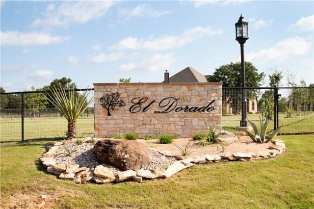 Lot 75 El Dorado Trail, Millsap, TX 76066 (MLS #14118587) :: RE/MAX Town & Country