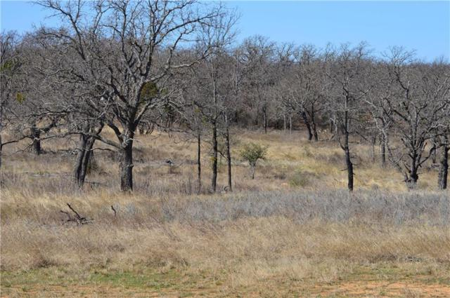 2500B Cool Junction, Millsap, TX 76066 (MLS #14118897) :: RE/MAX Town & Country