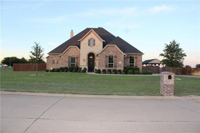 2011 E Ashley Brooke Court, Midlothian, TX 76065 (MLS #14119056) :: The Sarah Padgett Team