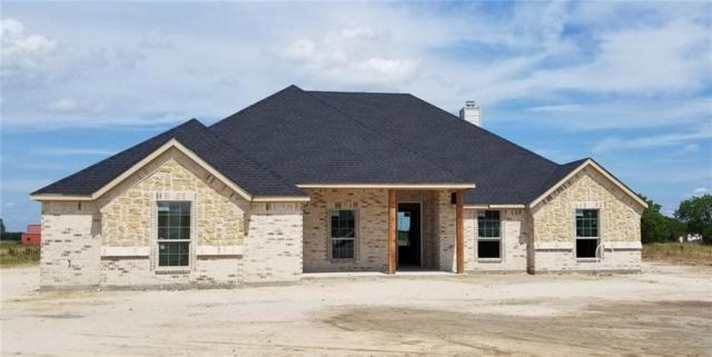 6667 Oakridge Court, Royse City, TX 75189 (MLS #14119640) :: The Heyl Group at Keller Williams