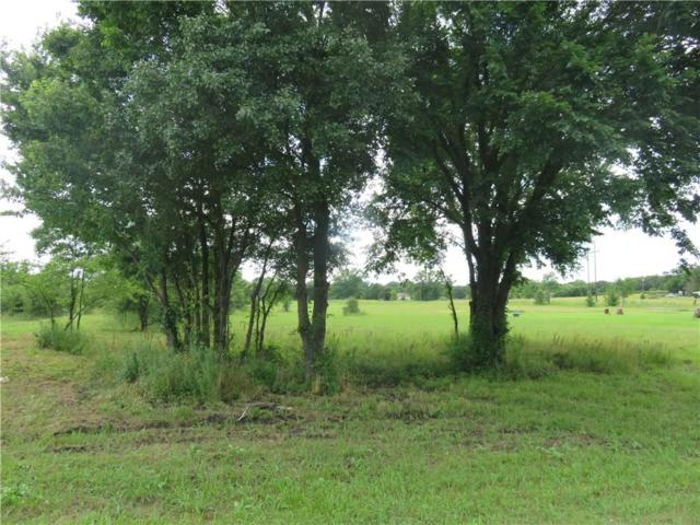 2421 Fm 131, Denison, TX 75020 (MLS #14119648) :: The Hornburg Real Estate Group