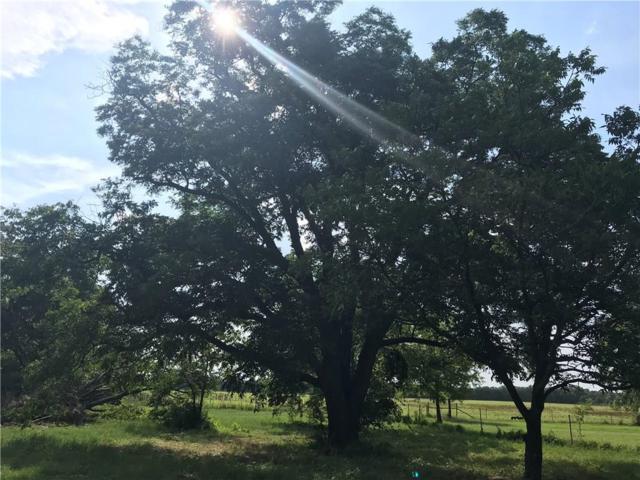 9999 Live Oak, Santo, TX 76472 (MLS #14119751) :: RE/MAX Town & Country