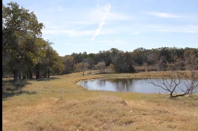 TBD Erwin, Poolville, TX 76487 (MLS #14119833) :: The Heyl Group at Keller Williams