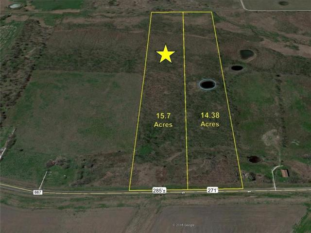 15.7 Ac Fm 667, Frost, TX 76641 (MLS #14120554) :: The Heyl Group at Keller Williams