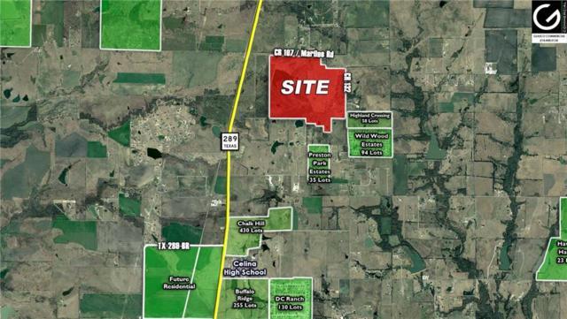 12121 County Rd 132, Celina, TX 75009 (MLS #14120602) :: The Kimberly Davis Group