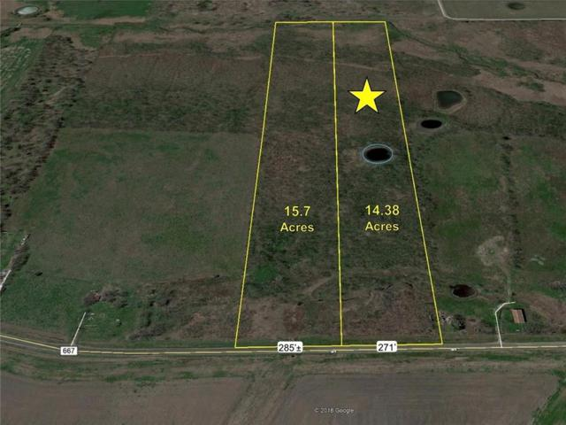 14.4 Ac Fm 667, Frost, TX 76641 (MLS #14120679) :: The Heyl Group at Keller Williams