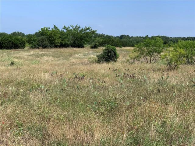 8003 Fawn Drive, Whitney, TX 76692 (MLS #14120707) :: The Good Home Team