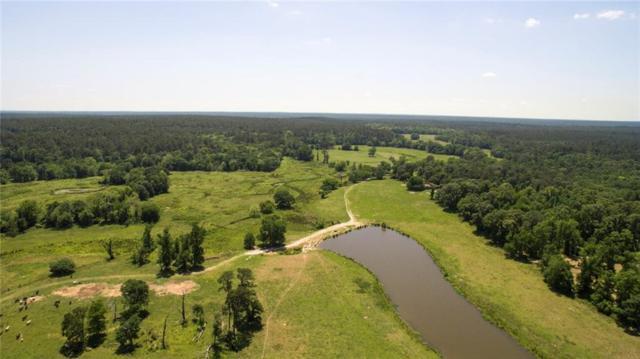 5500 Fm 1374, Huntsville, TX 77340 (MLS #14120805) :: RE/MAX Town & Country