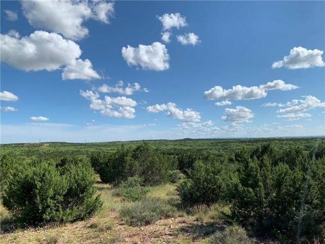 20 Taylor Ridge North, Abilene, TX 79536 (MLS #14120819) :: The Heyl Group at Keller Williams