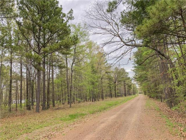 000 Cr 4223, Simms, TX 75574 (MLS #14121036) :: The Good Home Team