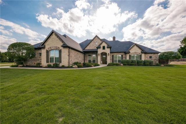 2921 American Sparrow Drive, Midlothian, TX 76065 (MLS #14121280) :: RE/MAX Town & Country