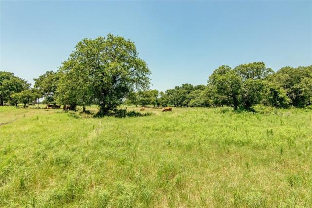 13225 County Road 417, May, TX 76857 (MLS #14121333) :: Ann Carr Real Estate
