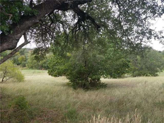 42022 Preston Trail, Whitney, TX 76692 (MLS #14121426) :: The Good Home Team