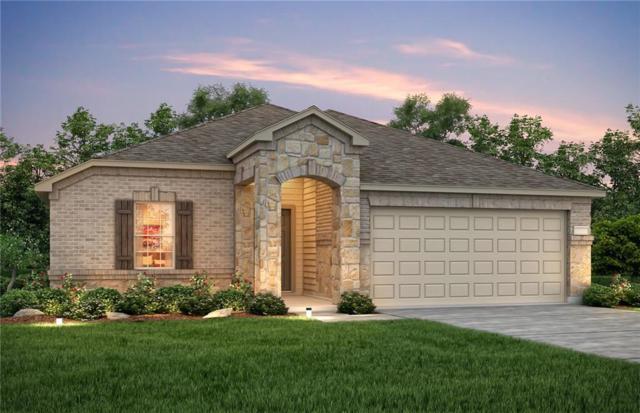 3316 Biggs Avenue, Aubrey, TX 76227 (MLS #14121755) :: RE/MAX Town & Country