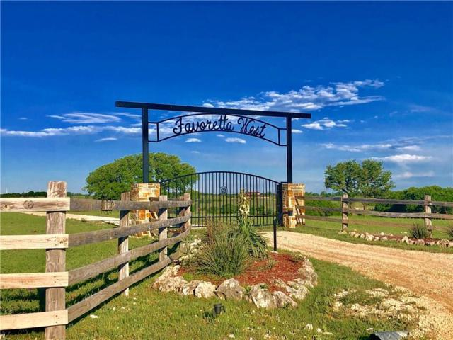 80 County Road 313, Goldthwaite, TX 76844 (MLS #14121832) :: RE/MAX Town & Country