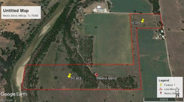 TBD Meeks Bend, Millsap, TX 76066 (MLS #14122343) :: Lynn Wilson with Keller Williams DFW/Southlake