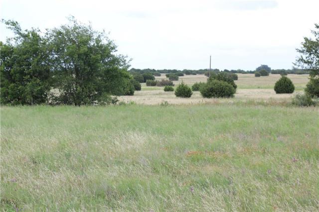 TBD Highway 219, Dublin, TX 76446 (MLS #14122517) :: Ann Carr Real Estate