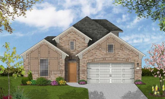 14317 Spitfire Trail, Fort Worth, TX 76262 (MLS #14122804) :: The Heyl Group at Keller Williams
