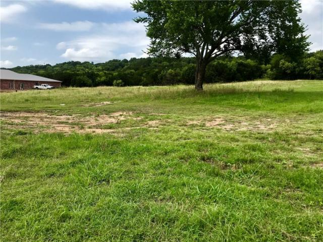 LOT 2 W Hwy 180, Mineral Wells, TX 76067 (MLS #14122914) :: The Mitchell Group