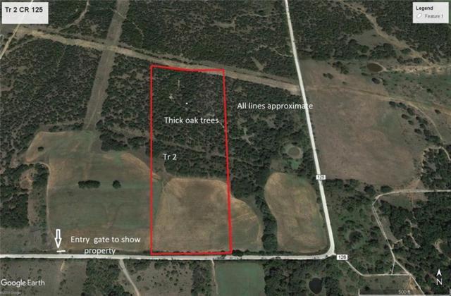 Gordon, TX 76453 :: Ann Carr Real Estate