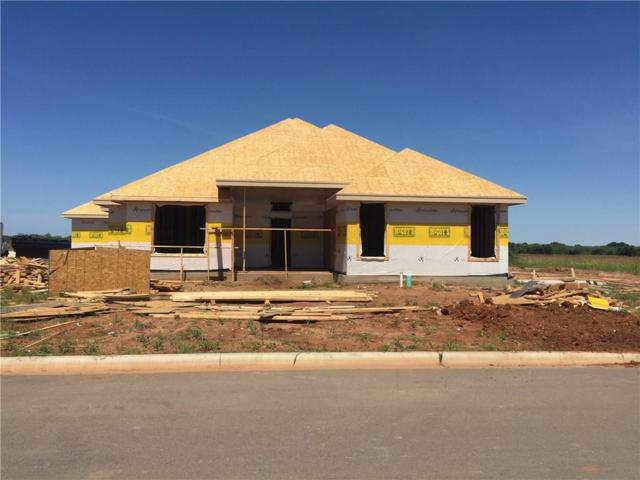 334 Windmill Crossing Drive, Ovalo, TX 79541 (MLS #14123129) :: Robbins Real Estate Group