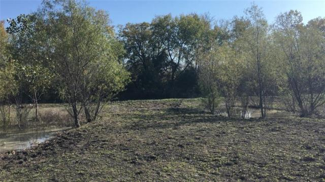 TBD County Road 728, Princeton, TX 75407 (MLS #14123255) :: The Hornburg Real Estate Group
