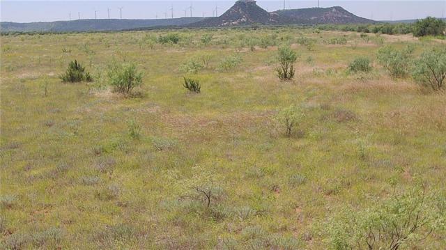 40 acs County Road 353, Merkel, TX 79536 (MLS #14123420) :: The Heyl Group at Keller Williams
