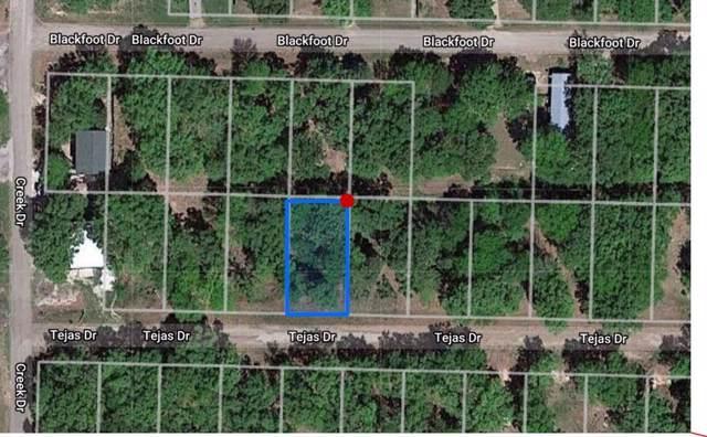 6128 Tejas Drive, Mabank, TX 75156 (MLS #14123487) :: Keller Williams Realty