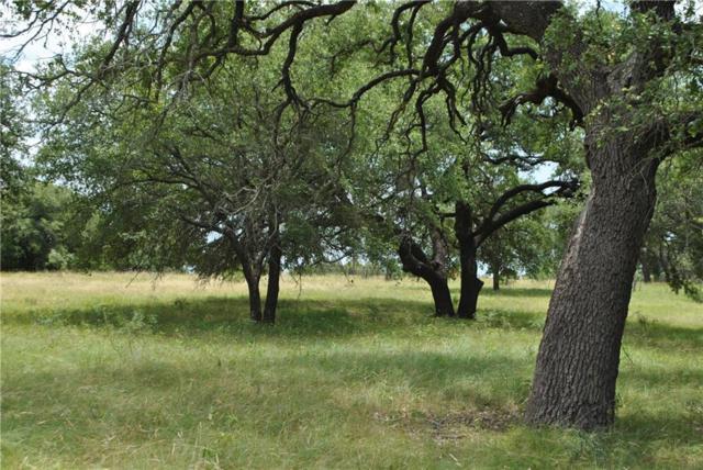 TBD Highway 84 E, Zephyr, TX 76890 (MLS #14123525) :: Kimberly Davis & Associates