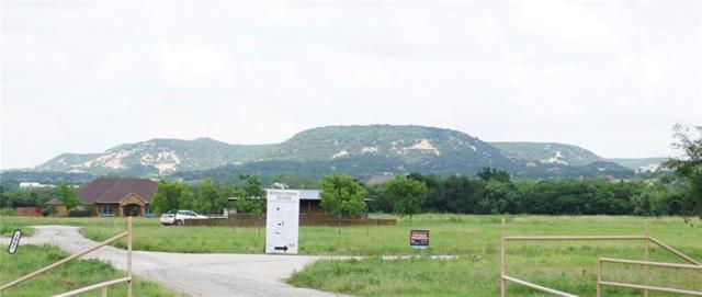 Lot 4 Buffalo Creek Lane, Buffalo Gap, TX 79508 (MLS #14123781) :: HergGroup Dallas-Fort Worth
