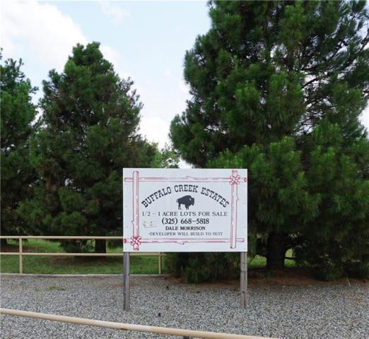 Lot 7 Buffalo Creek Lane, Buffalo Gap, TX 79508 (MLS #14123795) :: HergGroup Dallas-Fort Worth